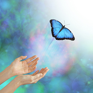 60432057 - into the light - metaphorical representation of releasing or letting a soul go, into the light, using a butterfly, female hands and an ethereal background & white light
